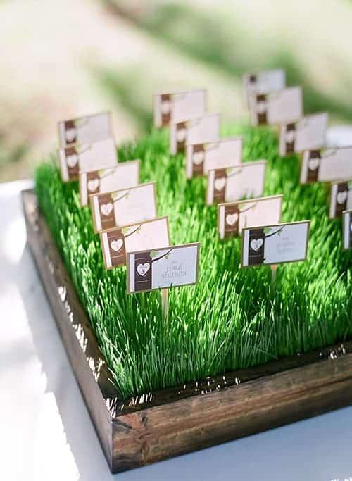escort cards in grass