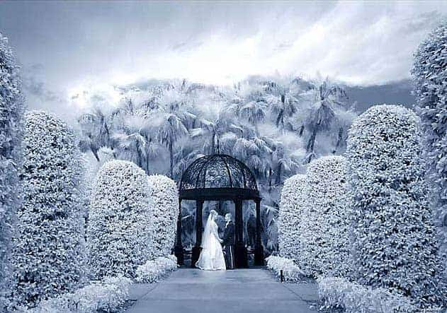 Excellent example of infrared wedding photography