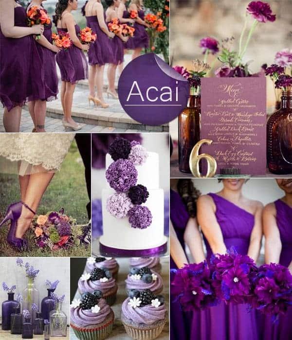 dark purple acai fall wedding color ideas