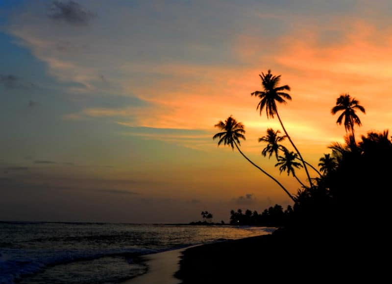 sunset in mirissa sri lanka by eileen cotter wright